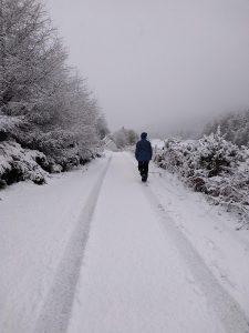 Snowy Canalside Walks